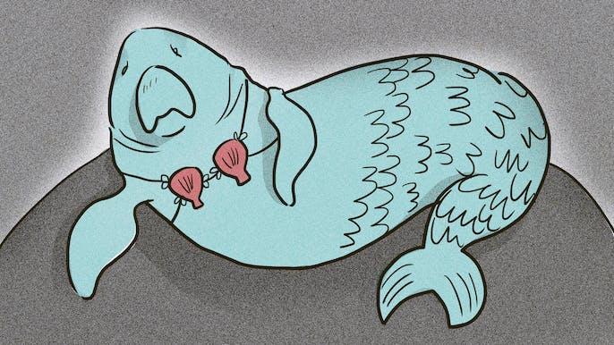 The Secret Origins of Sea Monsters