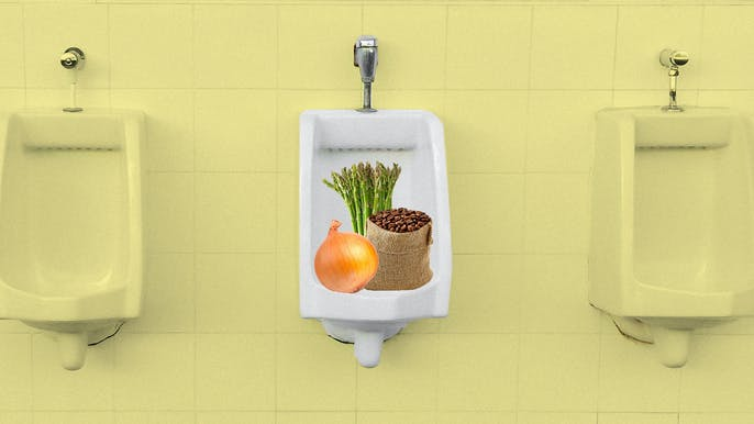 All the Stuff That Makes Your Pee Smell—and What It Means