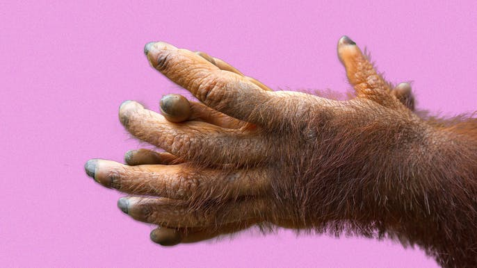 How to Tame Your Bushy Man Hands