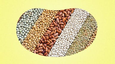Everything You've Ever Wanted to Know About Beans, But Have Bean Afraid to Ask