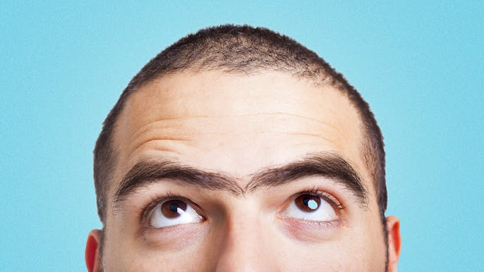 The Unsettling Science of Unibrows